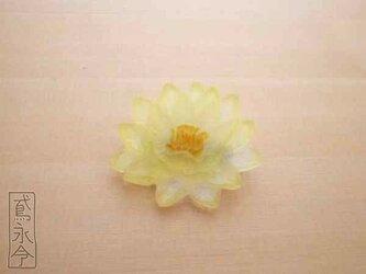 ブローチ 透明黄色の睡蓮の画像