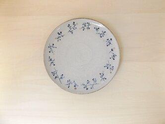 中皿 青茶の実の画像