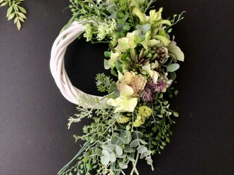 Green wreathの画像