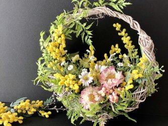 Mimosa Basketの画像