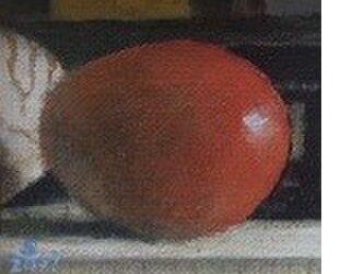 アップルマンゴーとオウム貝・Sの画像