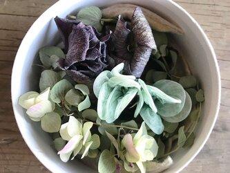 Quguriイヤリング「shells 緑霧」の画像