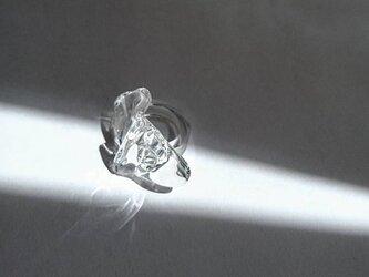 送料無料 kagero/ring/11号の画像