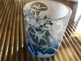 朝顔グラデーションブルーグラスの画像
