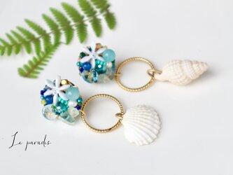 blue shellの画像