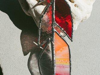 羽ガラス*REDの画像
