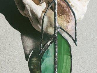 羽ガラス*clear Greenの画像