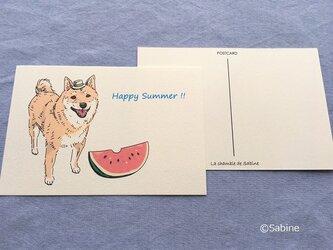 柴犬、スイカおいしいって!*2枚組の画像