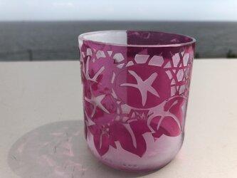 ショッキングピンク 朝顔グラスの画像