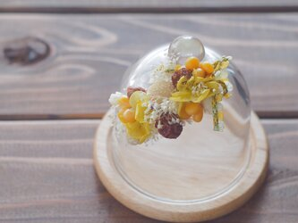 【トロッケンクランツ】プチガーランド付きガラスドーム イエロー・Aの画像