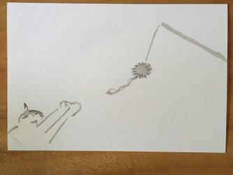 絵葉書/ポストカード <猫・届かないっ>の画像