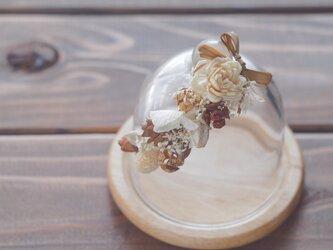 【トロッケンクランツ】プチガーランド付きガラスドーム ナチュラルの画像