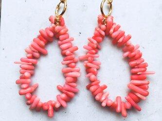 ピンク珊瑚フープリングイヤリングの画像