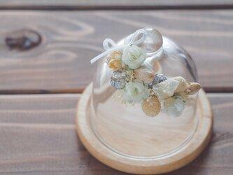 【トロッケンクランツ】プチガーランド付きガラスドーム ホワイトの画像