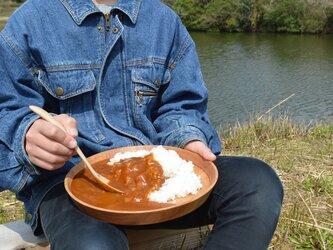 【数量追加◎】カレーが美味しい桜の丸皿 cherry round platter サクラ 大平皿 0051の画像