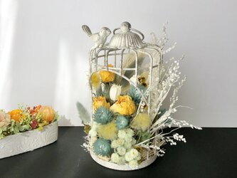 Birdcage Dryflowerの画像