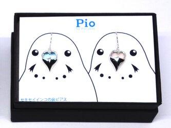 セキセイインコのつがい鼻ピアス:SV925・ブルトパ・ローズクォーツ【Pio by Parakee】の画像