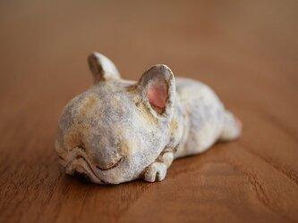 ひのきの寝てるフレンチブルくん。(売れました)の画像