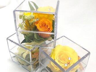 クリアキューブの中に咲く黄色い花たちの時間/プリザーブドフラワー/ギフトボックス付きの画像