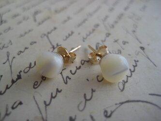 vintage shell button pierceの画像