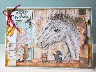 白い馬のバースデイカードの画像