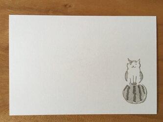 絵葉書/ポストカード <すいか>の画像