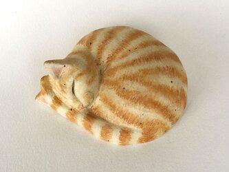 眠り猫の蓋もの(茶トラ)の画像