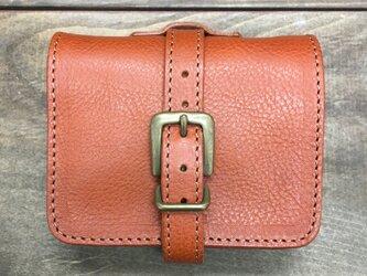 SALE! 装飾ベルトがかわいいお財布です アースの画像
