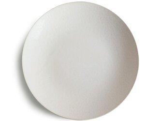 Terre 24mプレート Whiteの画像