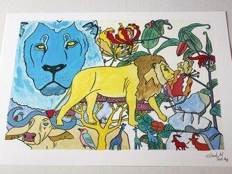 ライオン イラストA4サイズ の画像