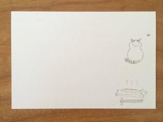 絵葉書/ポストカード <さんま>の画像