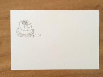 絵葉書/ポストカード <猫の手も借りた>の画像