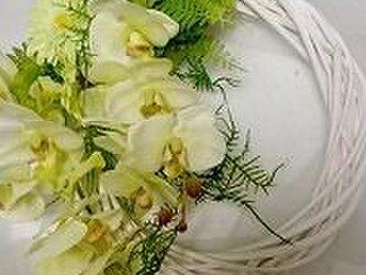 光触媒加工の美しいリース   ハワイアイランドの画像