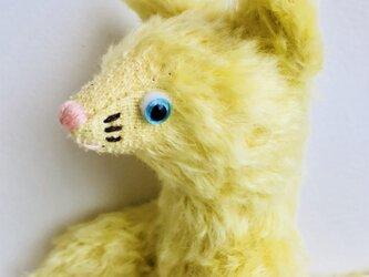 シャトン・ミモザ 子猫のぬいぐるみ プレゼント 贈り物 バースデーギフトの画像