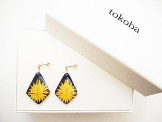 tokoba ピラミッド・ピアス ルリ スパーク(K18)の画像