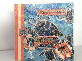 海亀のミニアルバムの画像