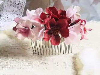 **irodoru**秋桜の唄。゜。゜**ボルドー色の秋桜と紫陽花のシンプルナチュラルなフラワーコーム**の画像