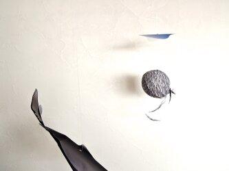 小魚を追うクジラの画像