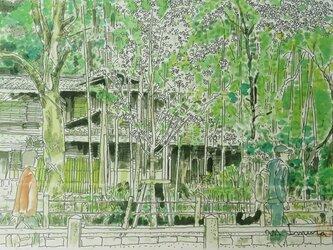 京の水彩画 A4サイズ 「哲学の道」の画像