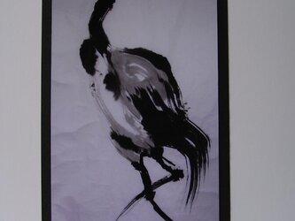 若鶴の画像