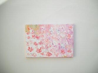Flower077の画像