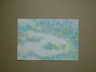 ぼんやり青草の画像