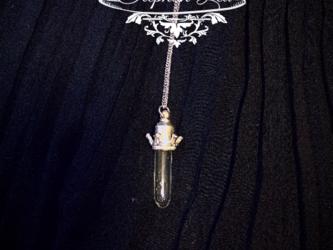 ★Stephan Lea★王の魔法の試験管シルバーペンダント45cmの画像