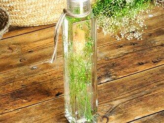【送料無料】グリーンハーバリウム ボタニカル かすみ草の画像