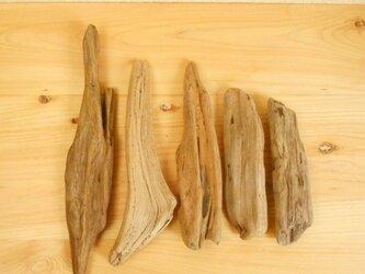 【温泉流木】なめらか質の海流木小サイズ5点セット 流木素材 インテリア素材 木材の画像
