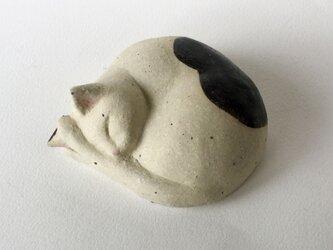 眠り猫の蓋もの(ぶち)の画像