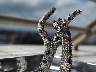イカゲソマグネットの画像