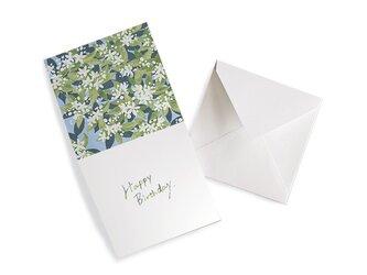HEY DAY -Happy birthday- メッセージカード ミカンの画像