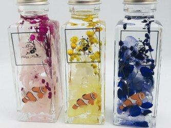 色が選べる。ハーバリウムの水族館〜Clownfish〜の画像