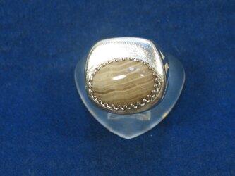 ペトリファイドウッドのリングの画像